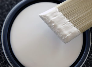 Paints & Coatings